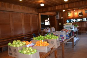 food giveaway 1